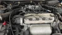 Honda Accord Разборочный номер 44642 #4