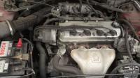 Honda Accord Разборочный номер W8792 #6
