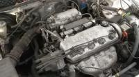 Honda Civic Разборочный номер W8489 #6
