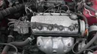 Honda Civic Разборочный номер B2097 #4