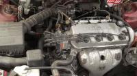 Honda Civic Разборочный номер W8826 #6