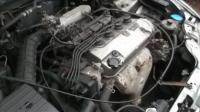 Honda Civic Разборочный номер W9812 #4