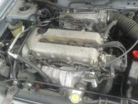 Nissan Primera P11 (1996-1999) Разборочный номер L3937 #4