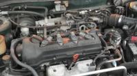 Nissan Primera P11 (1999-2002) Разборочный номер W9205 #2