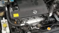 Nissan Primera P12 (2002-2008) Разборочный номер 49972 #5