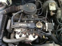 Opel Astra F Разборочный номер 52667 #4
