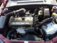 Opel Vectra B Разборочный номер 43883 #4