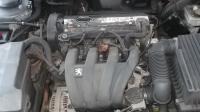 Peugeot 406 Разборочный номер B1933 #6
