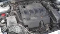 Peugeot 406 Разборочный номер W9530 #4