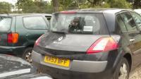 Renault Megane II (2002-2008) Разборочный номер W7752 #1