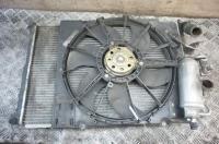 Вентилятор радиатора Renault Scenic I (1996-2003) Артикул 51553275 - Фото #1