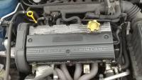Rover 25 Разборочный номер W9039 #4