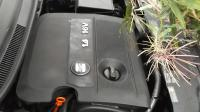 Seat Ibiza (2002-2006) Разборочный номер 45794 #5